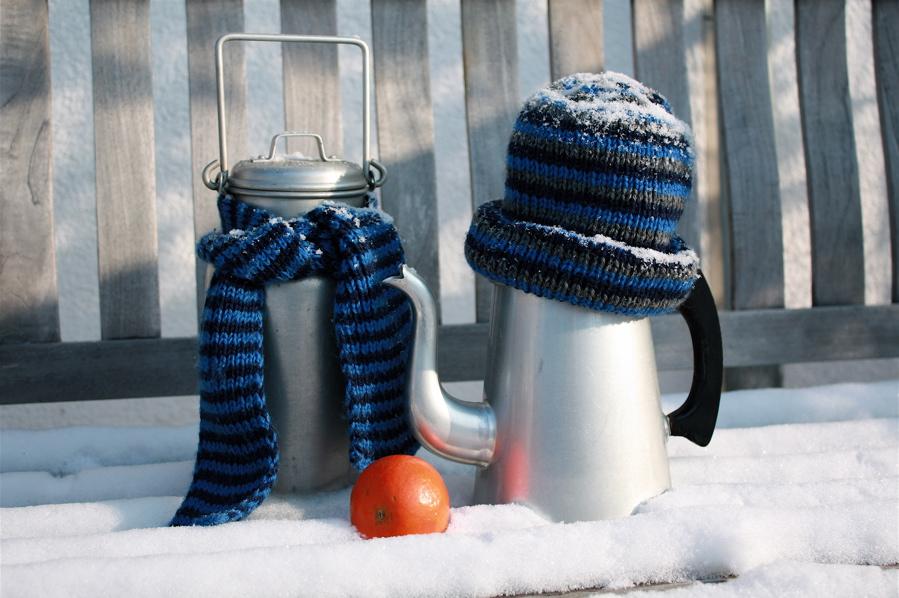 Как пержить зиму